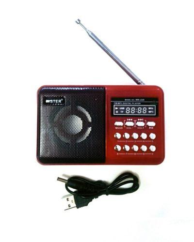 FM-Проигрыватель WS-229 1 динамик (LCD-Micro SD+USB+FM) Red, ПУ