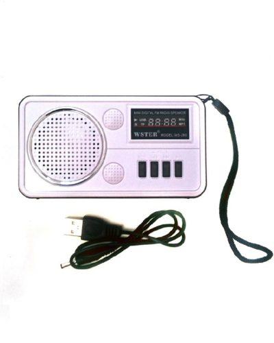 FM-Проигрыватель WS-820, 2-динамика (LCD-Micro SD+USB+FM) White, ПУ