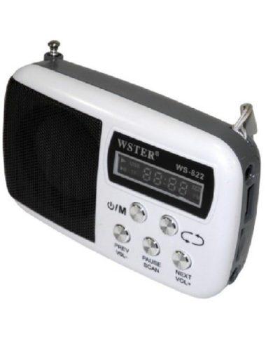 FM-Проигрыватель WS-822, 1-динамик (LCD-Micro SD+USB+FM) White, ПУ
